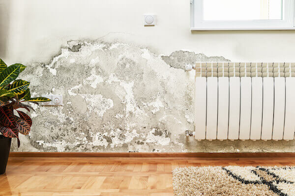 Damp proofing in Bath